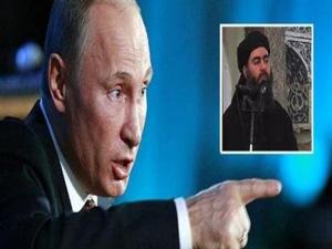 پوتین: ابوبکر البغدادی را زنده می خواهم