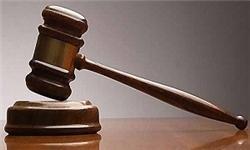 جزئیات حکم پرونده بینالمللی «آقازاده جنجالی»