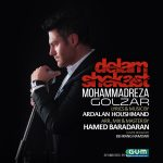دانلود آهنگ جدید و فوق العاده زیبای محمدرضا گلزار به نام دلم شکست
