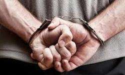 دستگیری فرزند مهاجرانی
