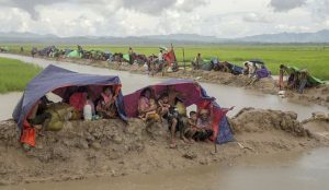 Amnesty says Myanmar killed hundreds of Rohingya