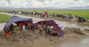Amnesty says Myanmar killed hundreds of Rohingya