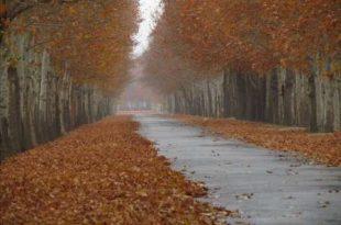 فرخ آباد زیبا دشت بهشت گردشگران در البرز